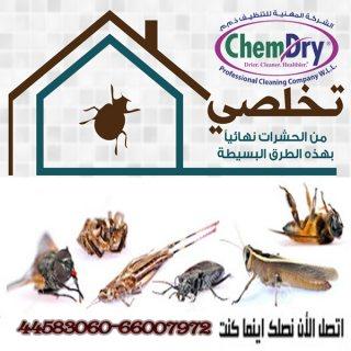 خصم علي مكافحة الصراصير والفئران