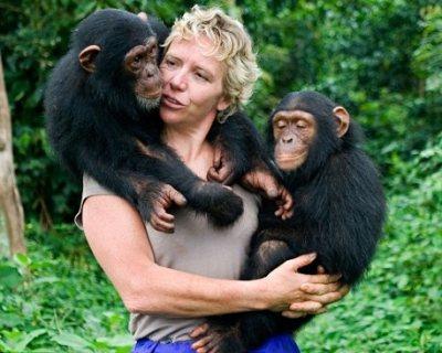 جميل وجميل طفل الشمبانزي