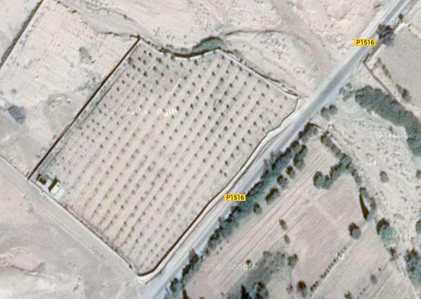 أرض فلاحية في المغرب ورزازات  2532 هكتار