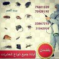 القضاء علي الحشرات والزواحف والقوارض