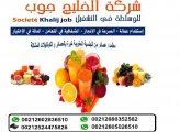 معلمين مشويات من الجنسية المغربية عند شركة الخليج جوب